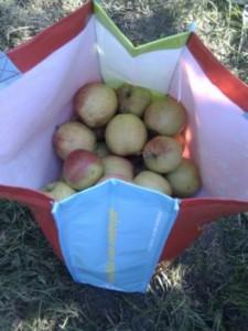 tas met appels